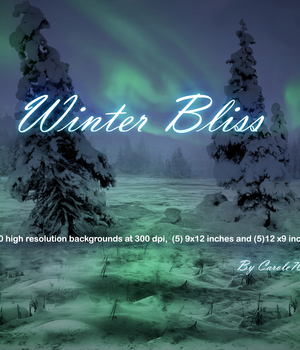 Winter Bliss 2D Graphics Carole70