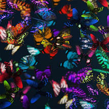 3D Insect Fauna: Flutter of Butterflies - Extended License image 5