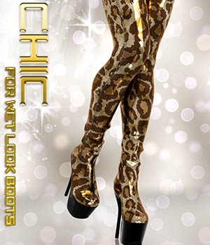 Chic for Wet Look Boots 3D Figure Assets Calico