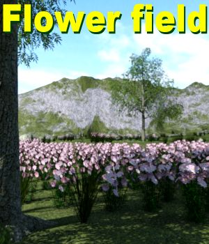 Flower field DAZ 3D Models JeffersonAF