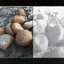 3D MiniScenery: Discarded Bread image 1