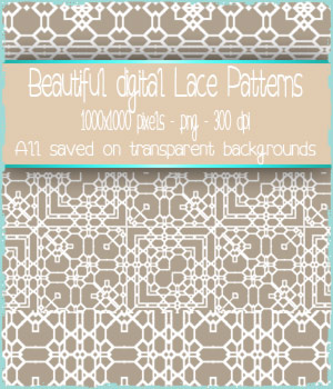 Digital Lace 3 2D Graphics Merchant Resources antje