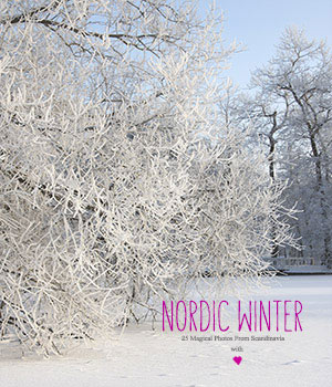 Nordic Winter  2D Graphics HWW0