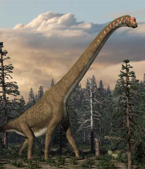 Giraffatitan DR - Extended License 3D Game Models : OBJ : FBX 3D Models Extended Licenses Dinoraul