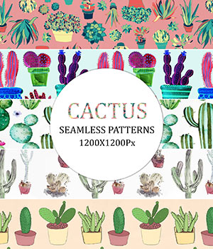 Cactus - Seamless Patterns 2D Graphics Merchant Resources romawka