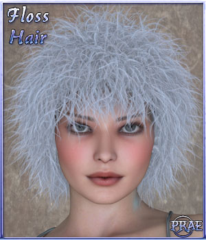 Prae-Floss Hair For V4 Poser 3D Figure Assets prae