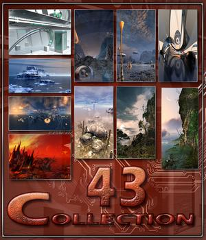 Collection_43