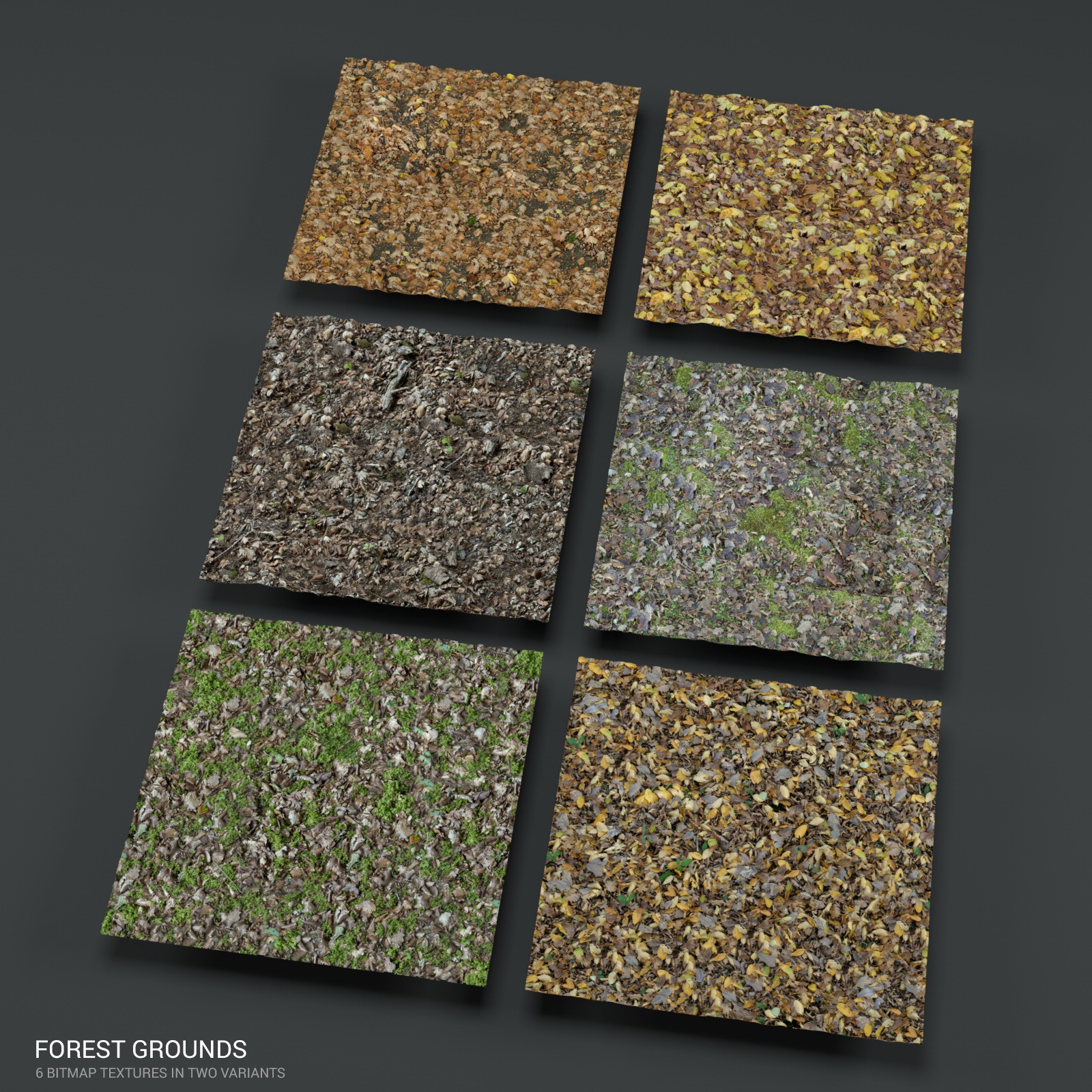 Forest ground PBR textures