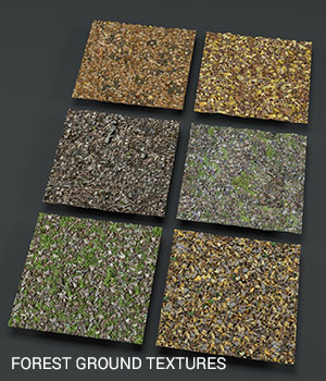 Forest ground PBR textures 2D Graphics offrench