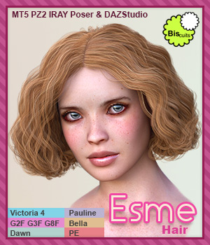 Biscuits Esme Hair 3D Figure Assets Biscuits