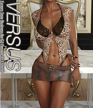 VERSUS - Exnem Sexy Business for G3 Female 3D Figure Assets Anagord
