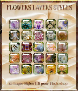 Flowzers Styles 2D Graphics Merchant Resources Perledesoie