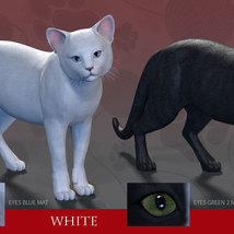 CWRW Black, White and Tuxedos for the HW House Cat image 2