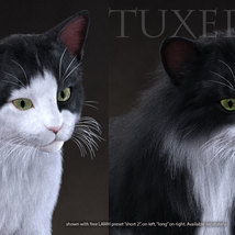 CWRW Black, White and Tuxedos for the HW House Cat image 5