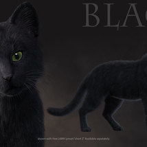 CWRW Black, White and Tuxedos for the HW House Cat image 6