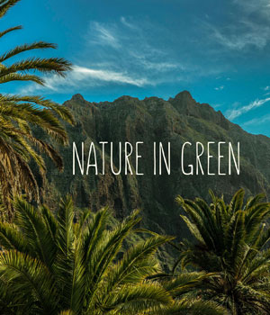 Nature In Green  2D Graphics HWW0