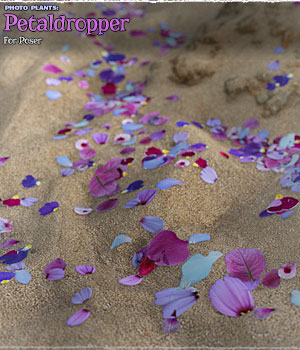 Photo Plants: Petaldropper for Poser 3D Figure Assets 3D Models ShaaraMuse3D
