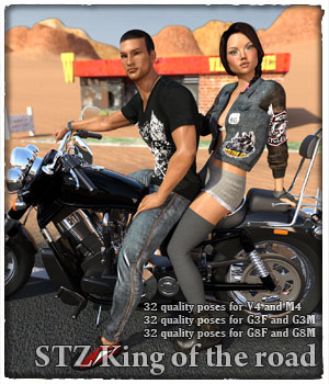 STZ King of the road 3D Figure Assets santuziy78