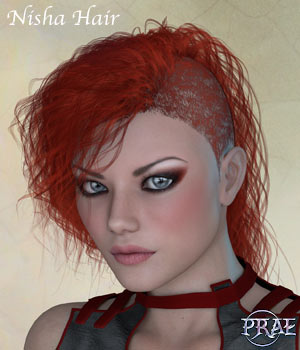 Prae-Nisha Hair For V4 Poser 3D Figure Assets prae