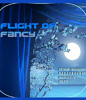 Flight of Fancy 2D Graphics RajRaja