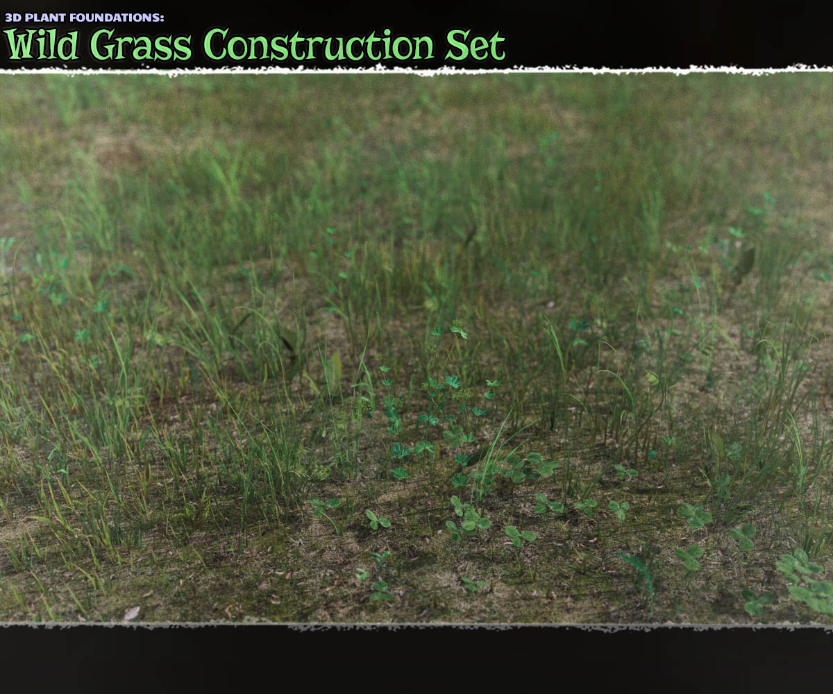 Plant Foundations: Wildgrass Construction Set by ShaaraMuse3D