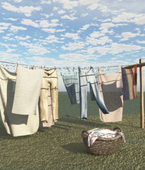 Old Windblown Clothesline For Vue 3D Models forester