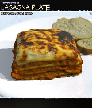 Photo Buffet: Lasagna Plate 3D Models ShaaraMuse3D