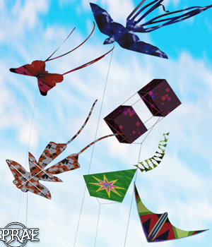 Prae-Kites for G3 G8 Daz 3D Models prae