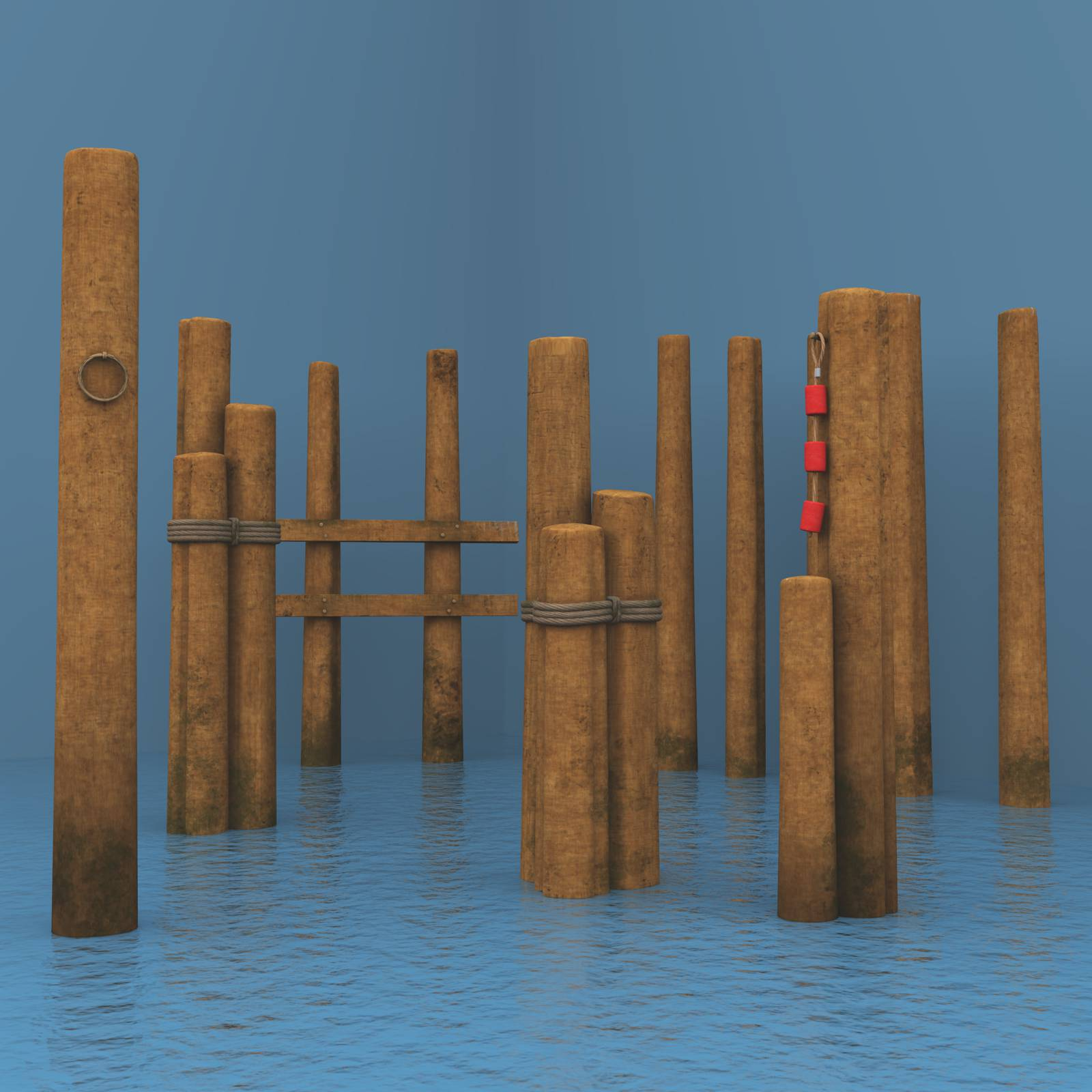 Old Wooden Pilings For Vue