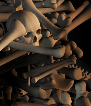 Bone Piles 3D Models MortemVetus
