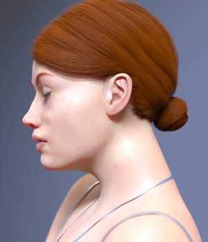 Ada Hair for Genesis 8 Female(s)  3D Figure Assets Toyen