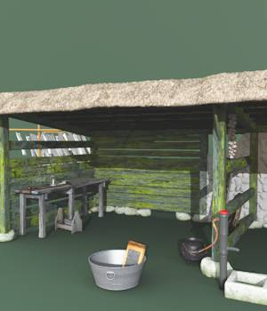 Old Irish Shed And Clothesline 3D Models forester