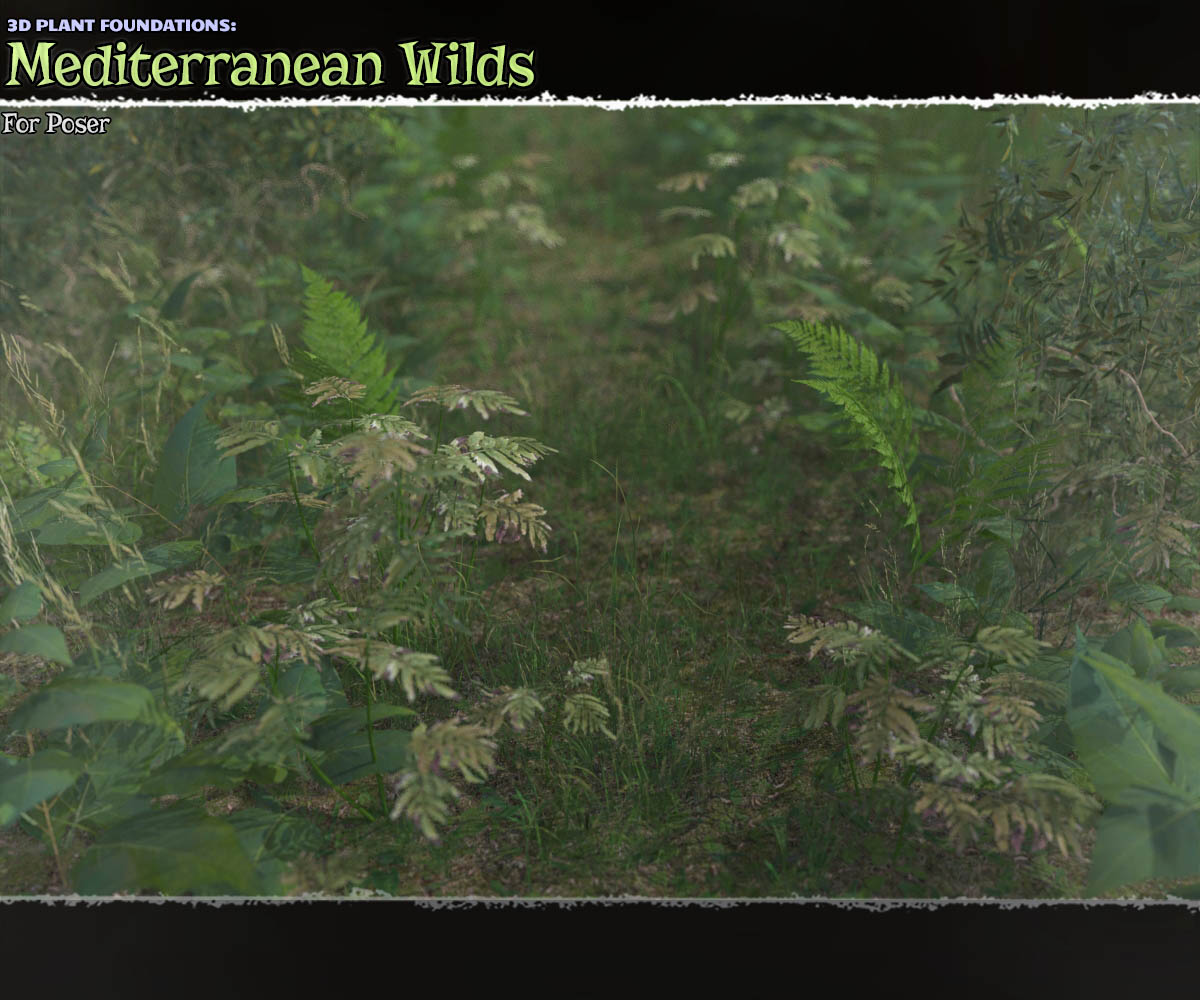 Plant Foundations: Mediterranean Wilds for Poser