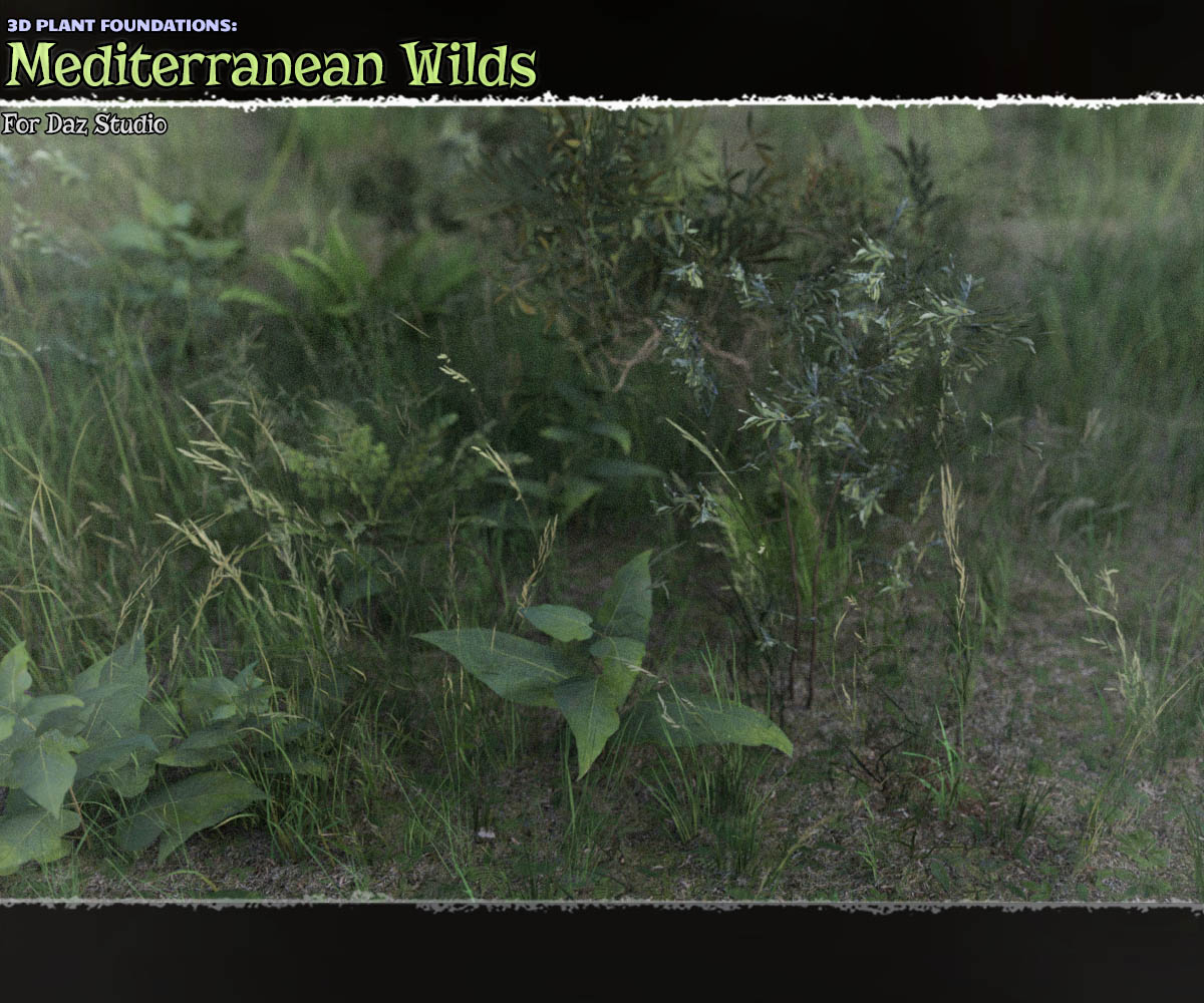 Plant Foundations: Mediterranean Wilds for Daz Studio