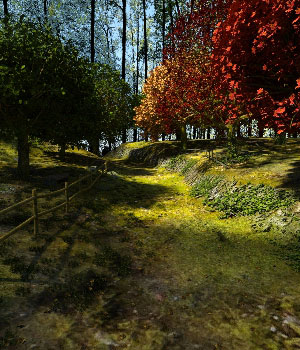 Forest Path 3D Models Martesarte