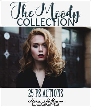 The Moody Collection 2D Graphics Merchant Resources MarieMcKennaDesigns
