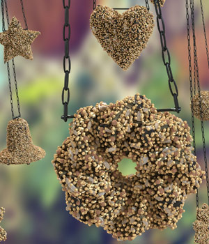 Feed The Birds: Seed Cakes 3D Models nightsong
