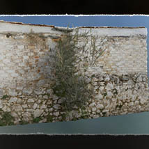 3D Stages: Overgrown Gate image 7