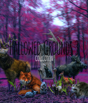 Hallowed Grounds Collection 3  2D Graphics HWW0