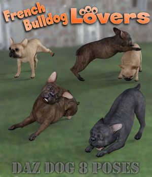 FRENCH BULLDOG Lovers Poses for French Bulldog Breed (Daz Dog 8) 3D Figure Assets Winterbrose