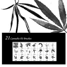 Cannabis PS Brushes image 5