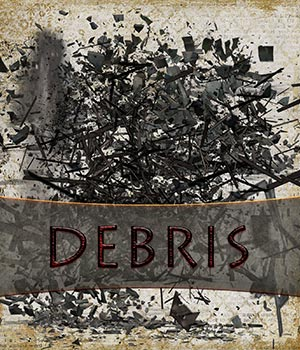 DEBRIS 2D Graphics Crystal46