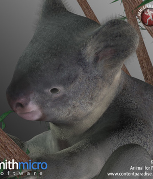 Koala Legacy Discounted Content Smith_Micro