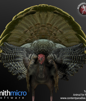Turkey (Male) Legacy Discounted Content Smith_Micro