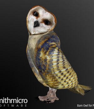 Barn Owl Legacy Discounted Content Smith_Micro