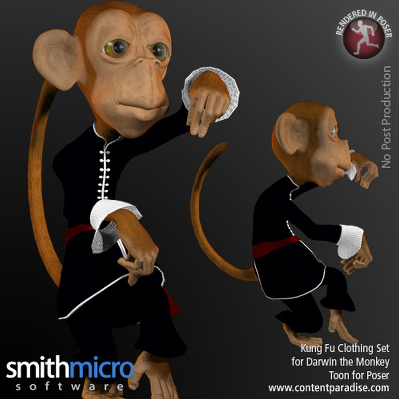 Kung Fu Clothing for Darwin Toon Monkey