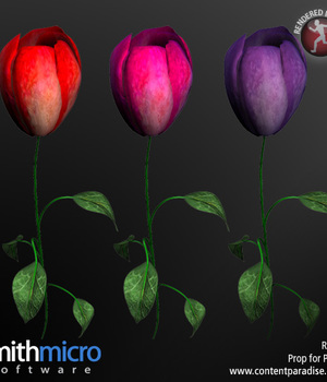 Long Stemmed Rose Legacy Discounted Content Smith_Micro