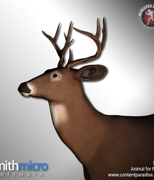 Buck (Wildlife Series) Legacy Discounted Content Poser_Software