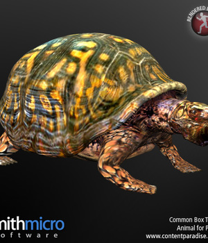 Common Box Turtle Legacy Discounted Content Smith_Micro
