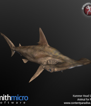 Hammerhead Shark Legacy Discounted Content Smith_Micro